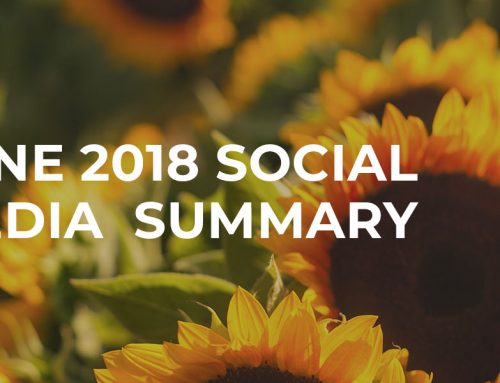 5 Summarised June Social Media Updates You Need to Know